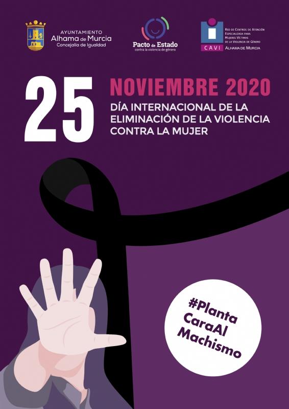 DIA INTERNACIONAL DE LA ELIMINACION DE LA VIOLENCIA CONTRA LA MUJER: Charla online 'El espejismo de la igualdad' - 1