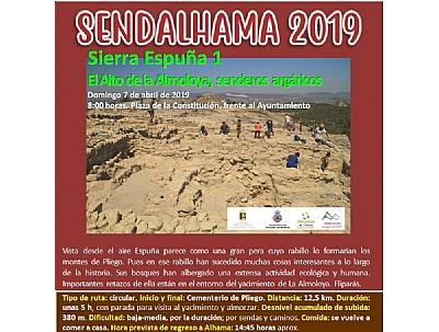 SENDALHAMA 2019: